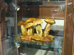 Žluté houbičky zjantaru jako zajímavá dekorace dozahrady.